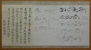 セイロン島の僧侶の書いたパーリ語の文字